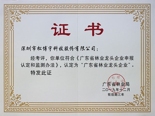免漆板十大品牌松博宇-广东省林业龙头企业