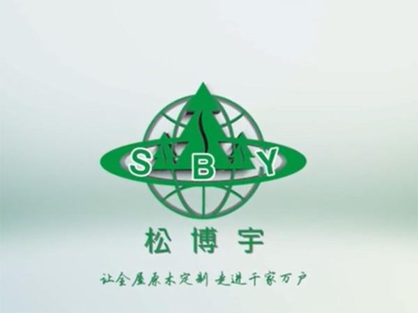 松博宇品牌宣传视频
