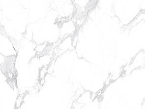 鱼肚白-SBY-BJ6802